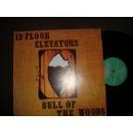 13th Floor Elevators - bull of the woods