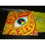 13th Floor Elevators - The Psychedelic Sounds ...