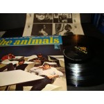 Animals - Animalization