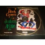 Black Crowes - Jealous Again