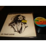 Bob Marley and the Wailers - Is this Love / Crisis