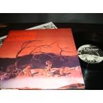 C.A.Quintet - Trip Thru Hell