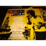 Crucial Chicago Blues / Various Alligator Records