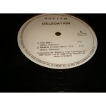 Delegation - You and I / dARLIN  / In the night / Gonna Bring..