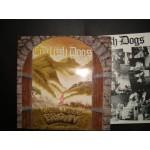 English dogs -  where legent began