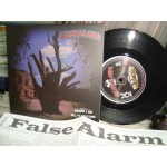 False Alarm ‎– Down I Go / Sell Me Something