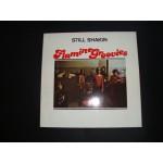 Flamin' Groovies - Still shakin