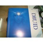 Medwyn Goodall - Druid