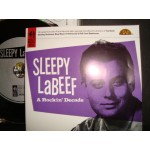 Sleepy Labeef - A Rockin' Decade