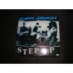 Flamin'  Groovies - Step up